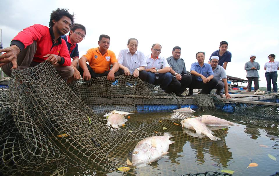 Fishermen Irked By Mysterious Johor Island